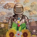 bill frisell_guitar in the space age
